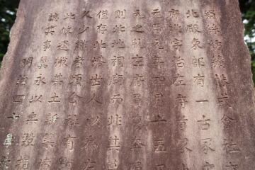7-981.jpg