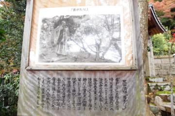 9-330.jpg