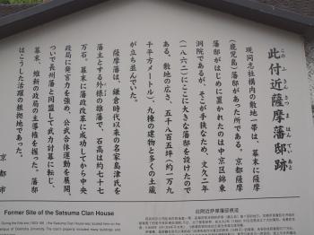 p8533.jpg
