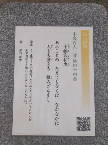 p8550.jpg
