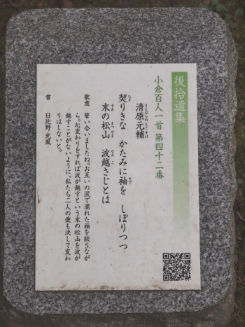 p8562.jpg
